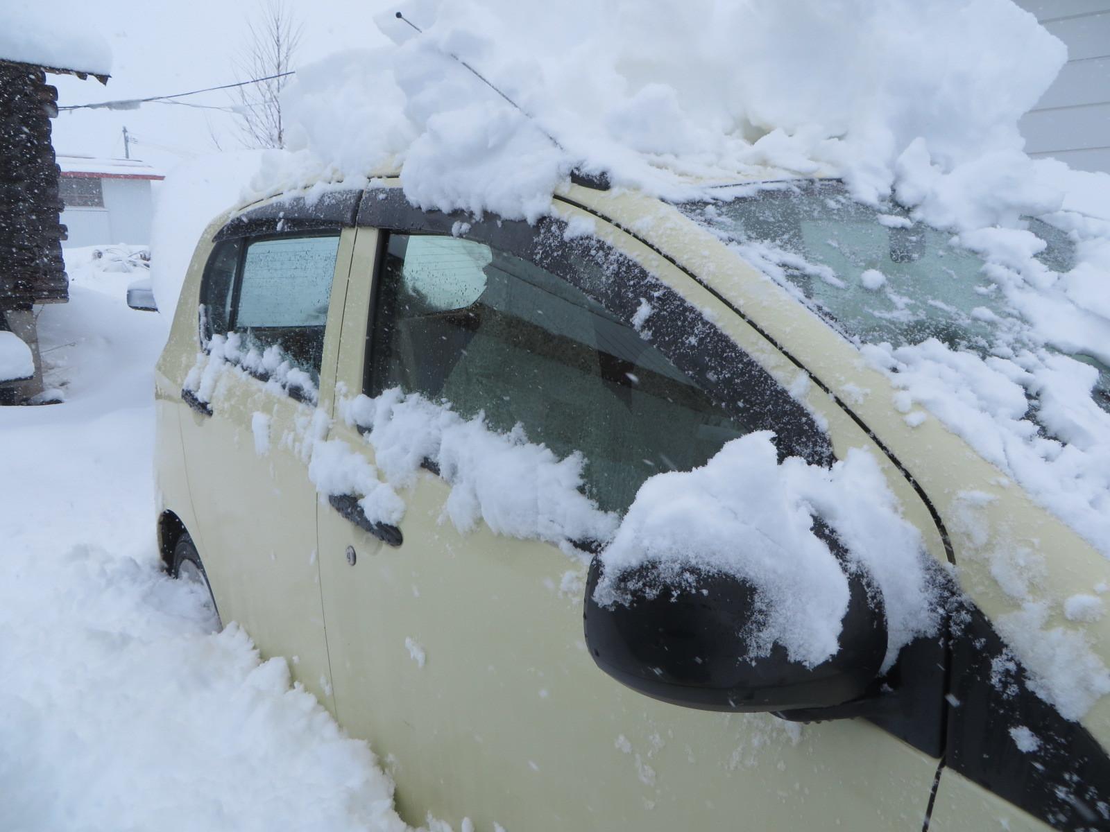 降っている雪_b0405523_10092426.jpg