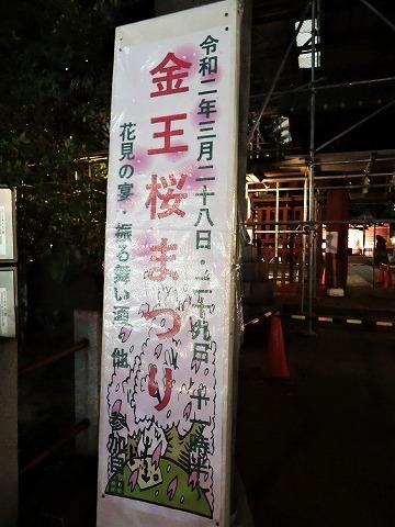 桜クエスト_c0062832_15552666.jpg