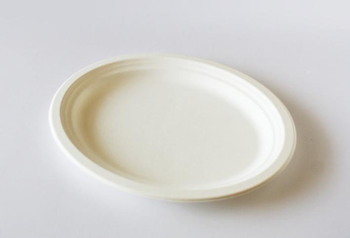 セリアの紙皿でつくる「ボタニカルプレート」_d0351435_09250646.jpg