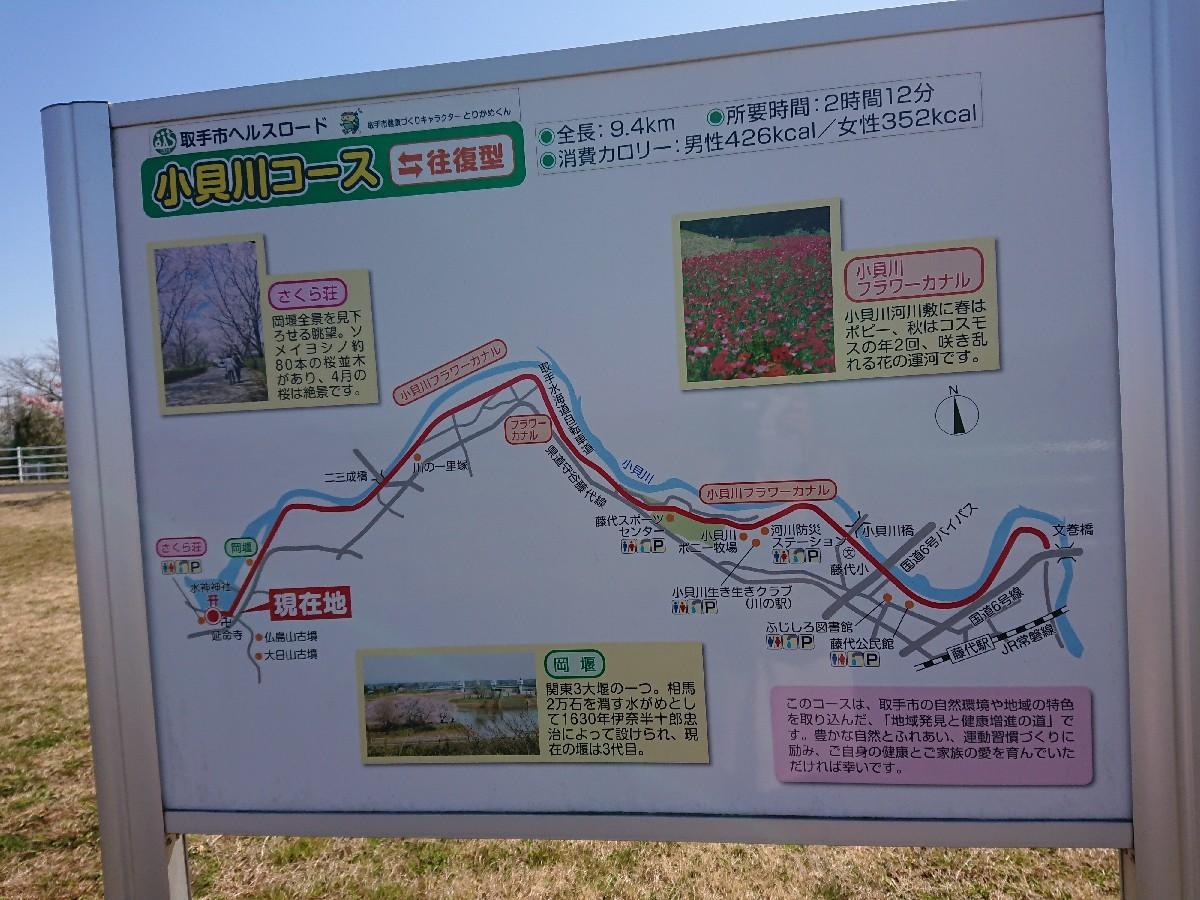 サイクリングへ(小貝川)_f0323446_21232324.jpg