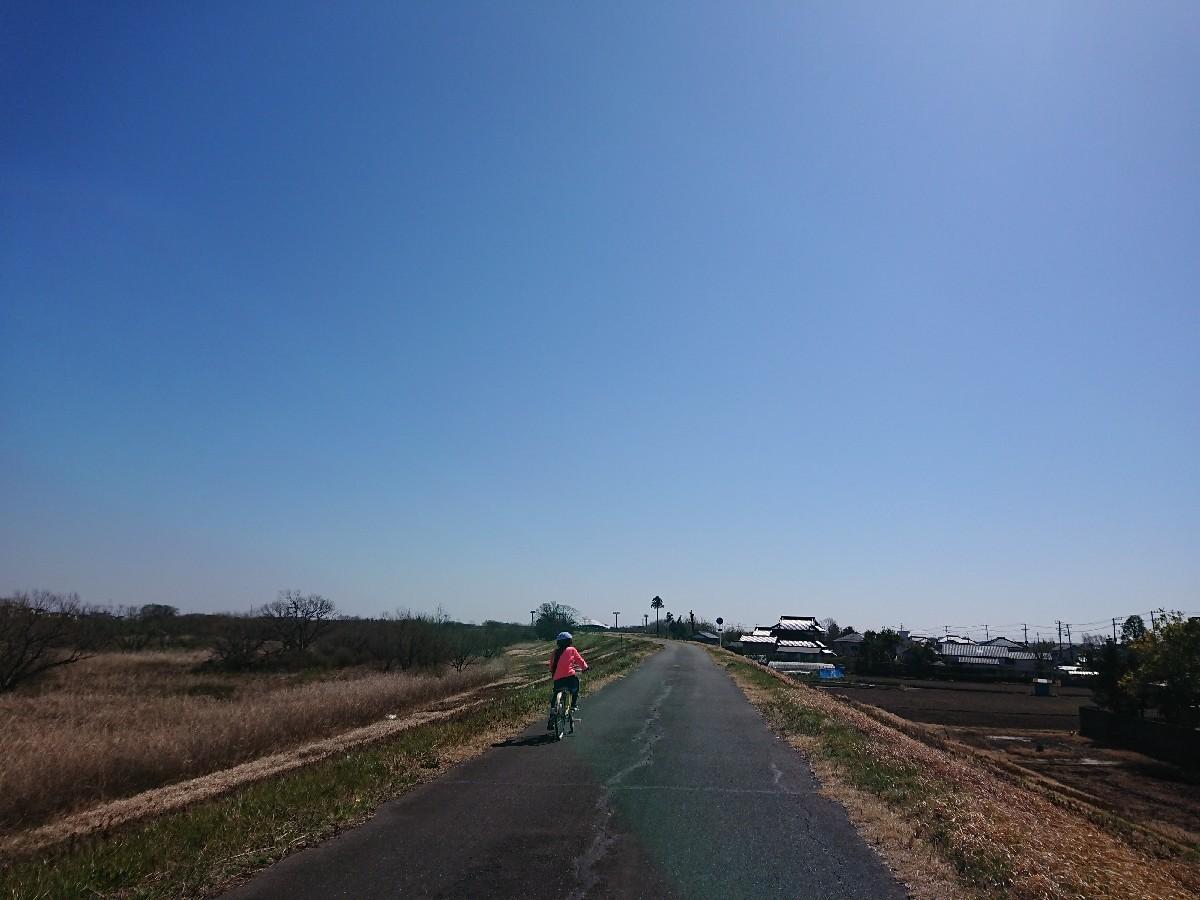 サイクリングへ(小貝川)_f0323446_21242506.jpg
