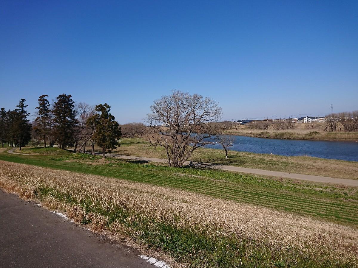 サイクリングへ(小貝川)_f0323446_21315046.jpg