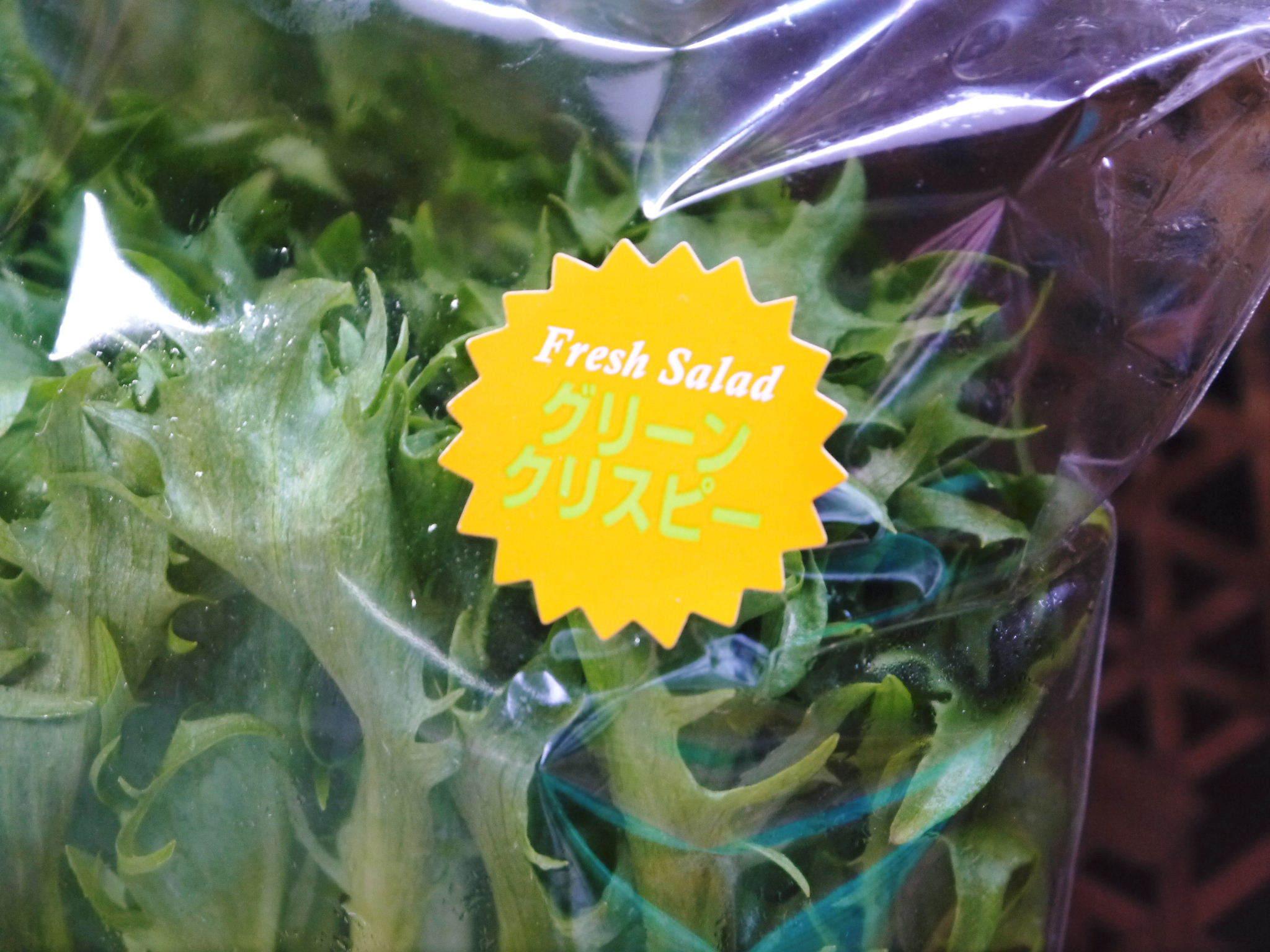 水耕栽培の新鮮野菜 無農薬栽培の生野菜!新商品!「グリーンクリスピー」の販売に向けて!_a0254656_17582002.jpg