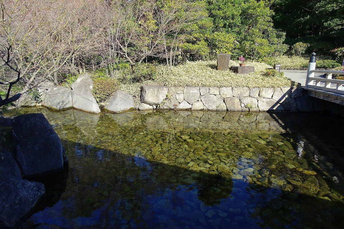 徳川園  龍門の瀧と大曽根の瀧_c0112559_08020066.jpg