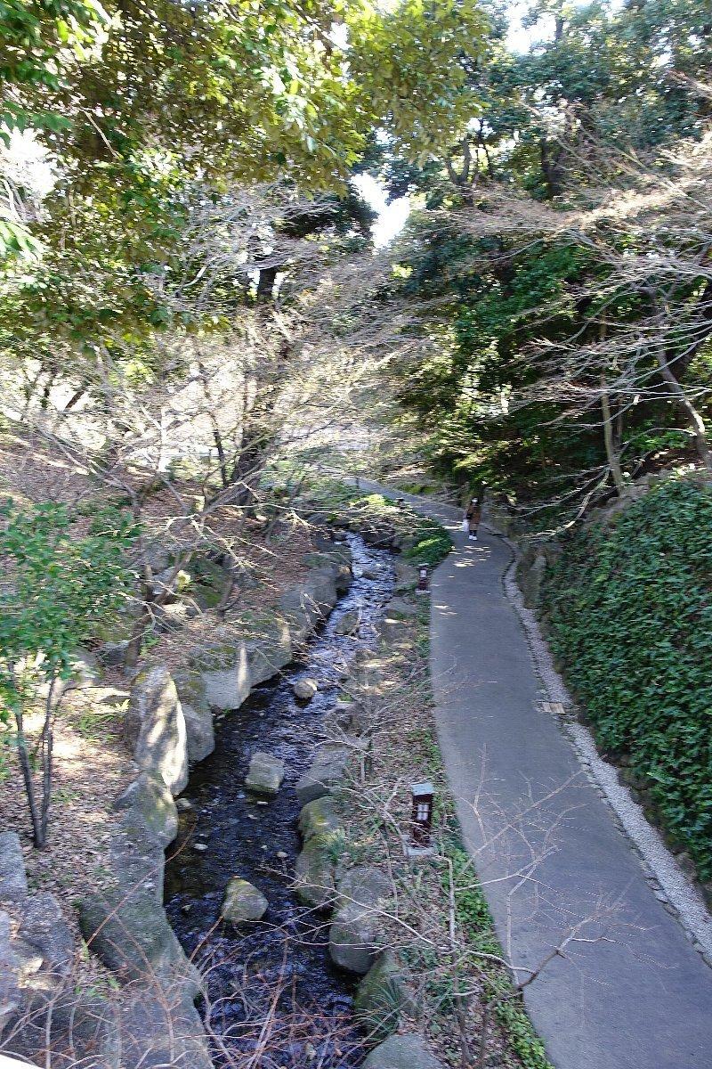 徳川園  龍門の瀧と大曽根の瀧_c0112559_08042734.jpg
