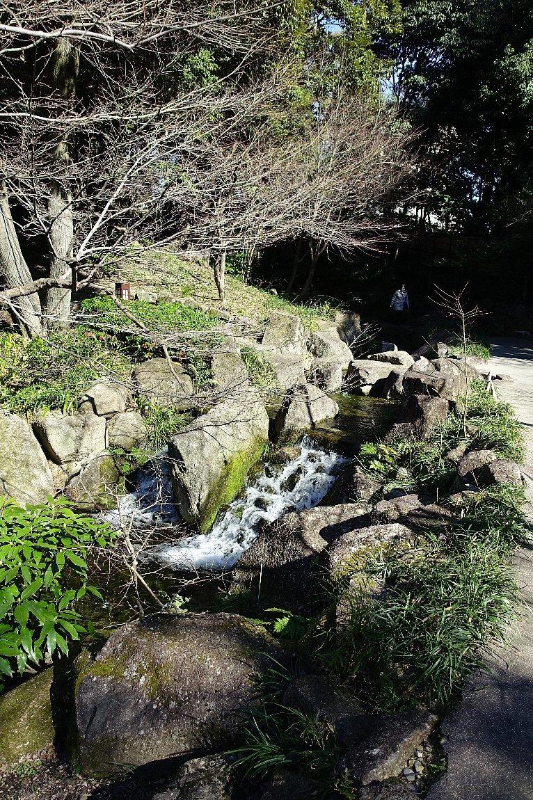 徳川園  龍門の瀧と大曽根の瀧_c0112559_08131269.jpg