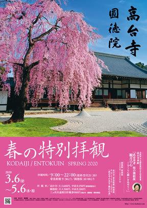 高台寺春のライトアップ_b0153663_23560470.jpeg
