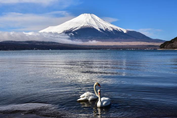 富士山色々_a0307264_13525337.jpg