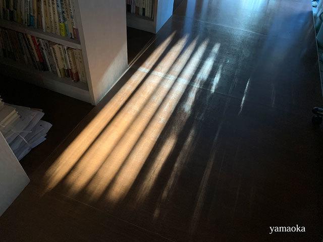 3月6日の夕暮れの影にグッとくる。_f0071480_17555824.jpg