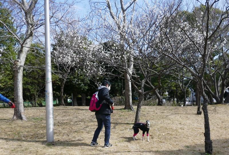 2月のお出かけ_e0018604_18495377.jpg