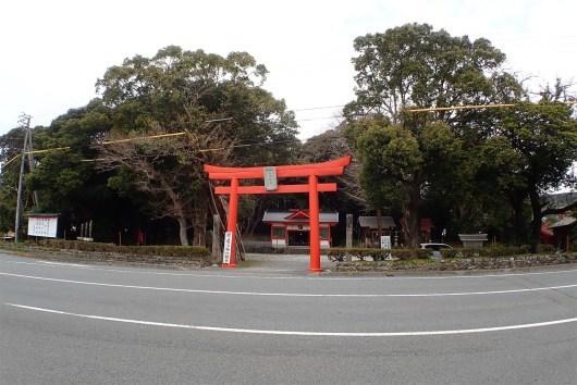 愛媛県のハナガガシ_d0272107_16282595.jpg