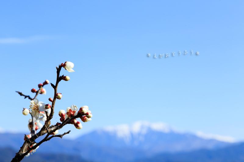 春うらら_f0181018_17245907.jpg