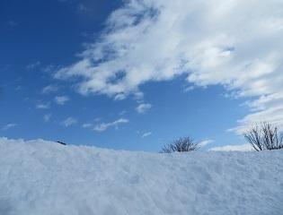 大雪のあと_b0405523_00472311.jpg