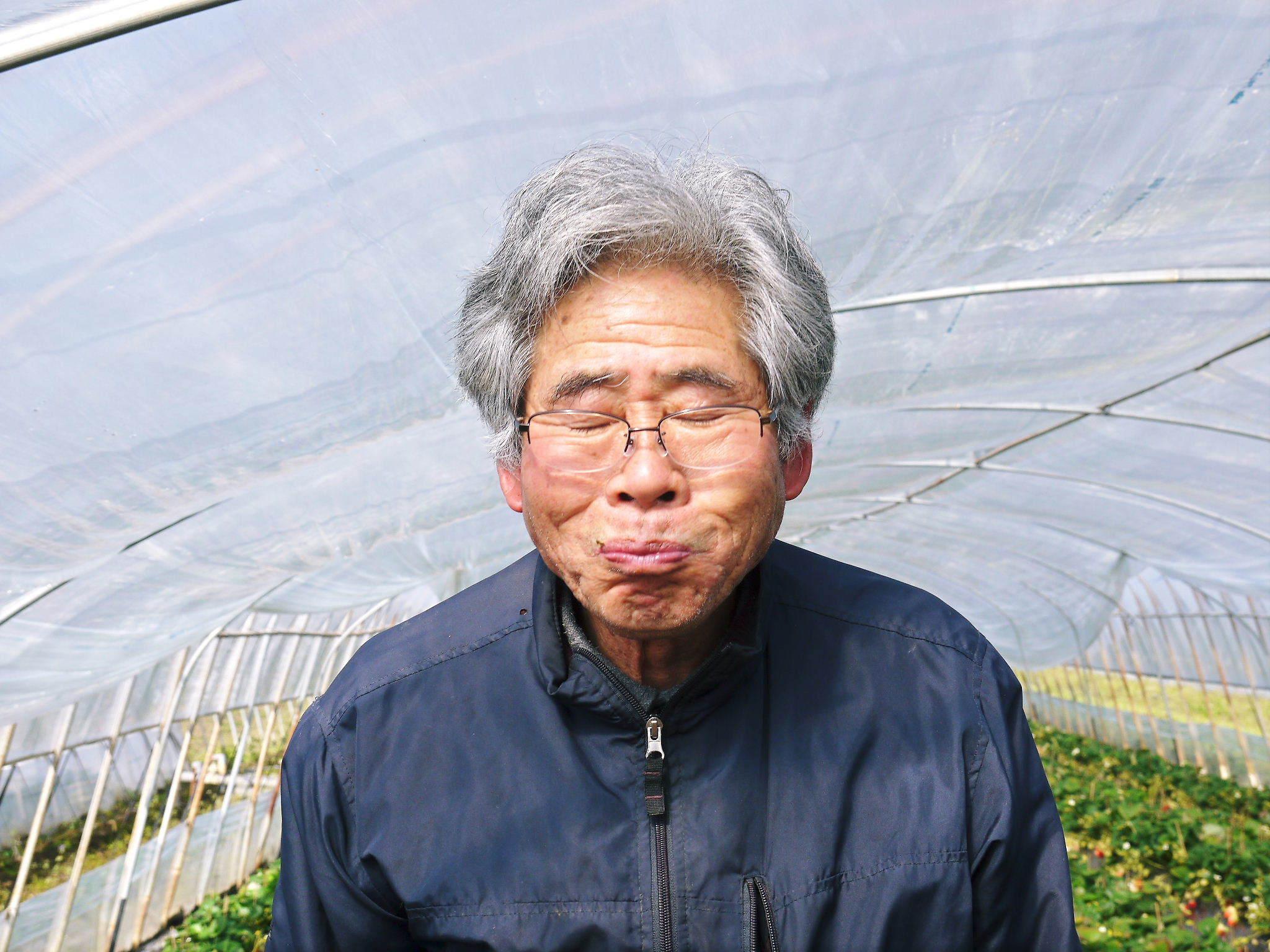 熊本産高級イチゴ『完熟紅ほっぺ』2020年はレギュラーパック3月末発送分、平積みパック4月中旬まで!_a0254656_17503433.jpg