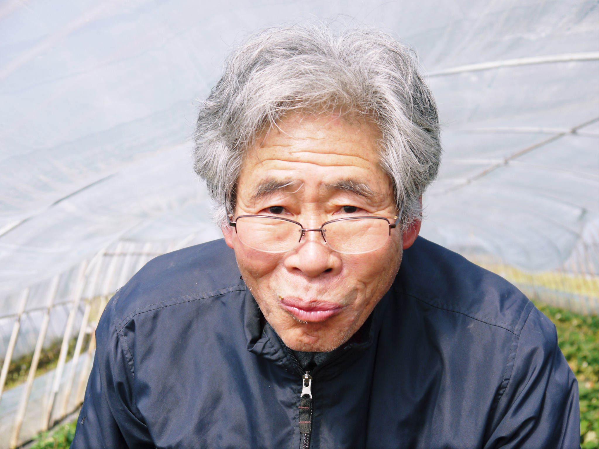 熊本産高級イチゴ『完熟紅ほっぺ』2020年はレギュラーパック3月末発送分、平積みパック4月中旬まで!_a0254656_17523976.jpg