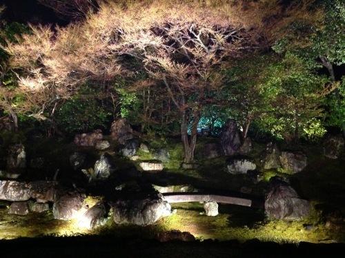 高台寺春のライトアップ_b0153663_00084969.jpeg