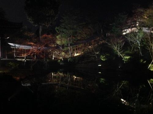 高台寺春のライトアップ_b0153663_00174304.jpeg