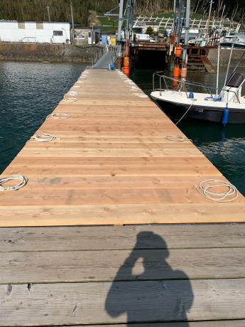 桟橋少しずつ伸びてます!_a0077071_12482342.jpg