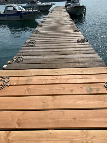 桟橋少しずつ伸びてます!_a0077071_12484108.jpg