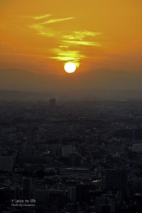 Tokyo 富士san SPOT #8_f0326278_21381262.jpg
