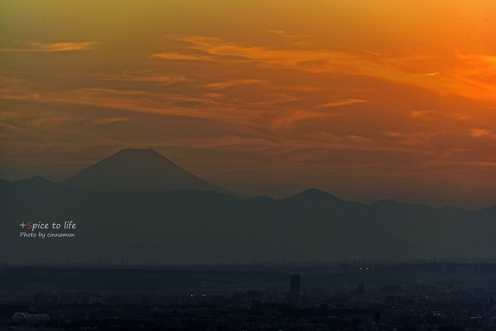 Tokyo 富士san SPOT #8_f0326278_21381873.jpg