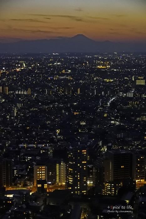Tokyo 富士san SPOT #8_f0326278_21382176.jpg