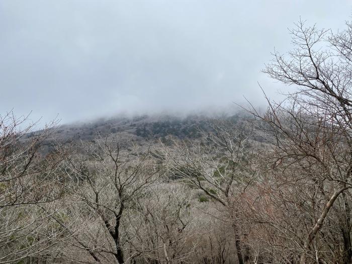 休みがあったら山登りin霧島(鹿児島)〜大浪池と韓国岳断念_f0232994_13320309.jpg