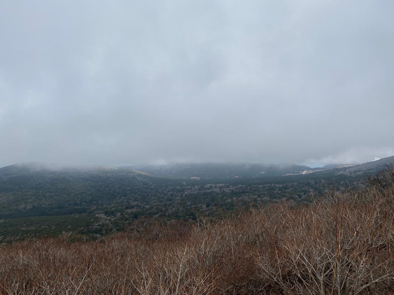 休みがあったら山登りin霧島(鹿児島)〜大浪池と韓国岳断念_f0232994_13330719.jpg