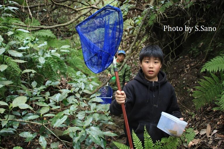 ジュニア生物調査隊 ~トウキョウサンショウウオの調査と保全作業~(2020)_b0348205_12014222.jpg