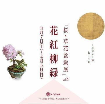 桜・草花盆栽展 vol.8_d0263815_16190451.jpg