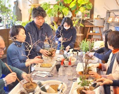 桜・草花盆栽展 vol.8_d0263815_16282142.jpg