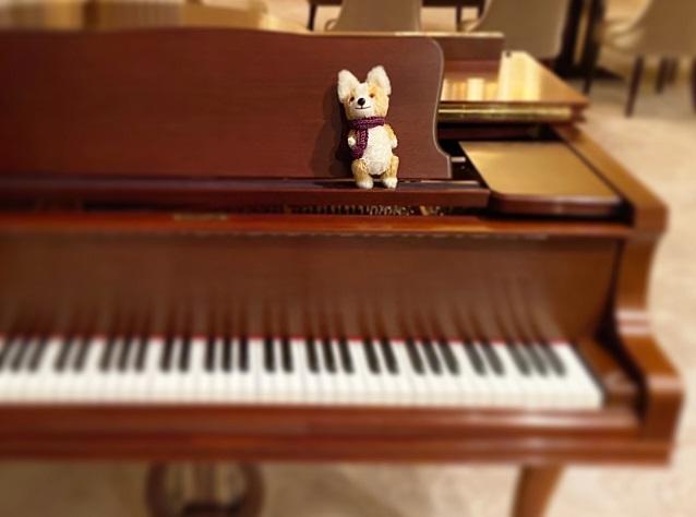3月のピアノレッスンについて_f0190816_0481628.jpg