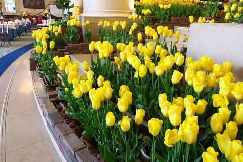 2020年3月14日~4月に開催する研修会のご案内。_d0046025_00533122.jpg