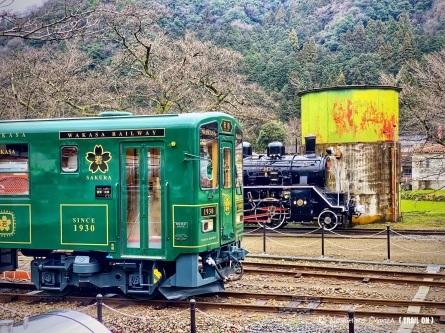 今日も賑やかな若桜鉄道!_f0101226_20064622.jpeg