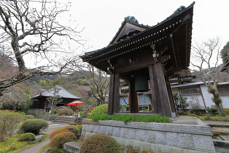 【海蔵寺】_f0348831_23394980.jpg