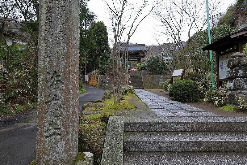 【海蔵寺】_f0348831_23395912.jpg