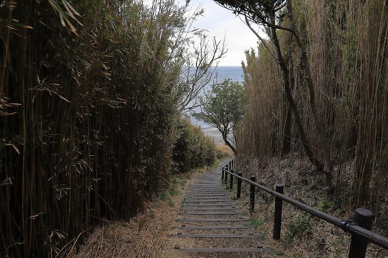 【長井海の手公園ソレイユの丘】_f0348831_23484635.jpg
