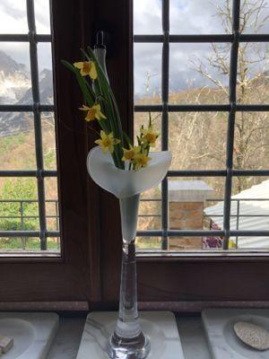 春色の花とジジ_d0136540_05190260.jpg