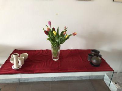 春色の花とジジ_d0136540_05191798.jpg