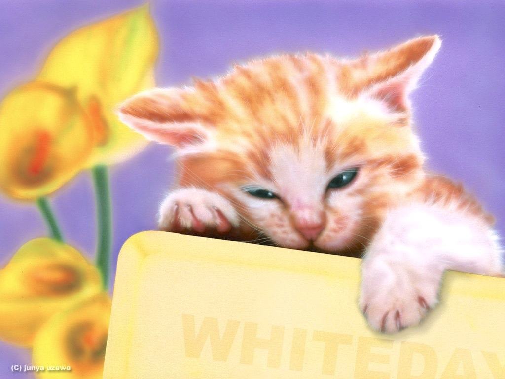 Junya Blog 猫 犬 リアリズム絵画