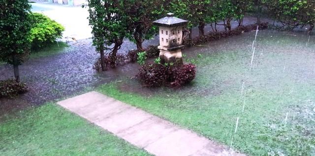 今季一番の大雨_d0083068_07420470.jpg