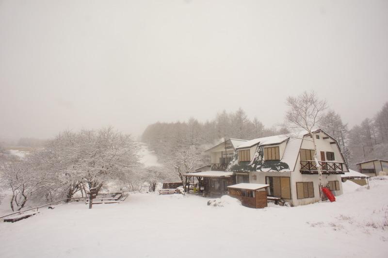 3月8日 雪_f0235376_10425019.jpg