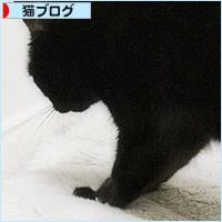 猫のもみもみ_a0389088_05461220.jpg
