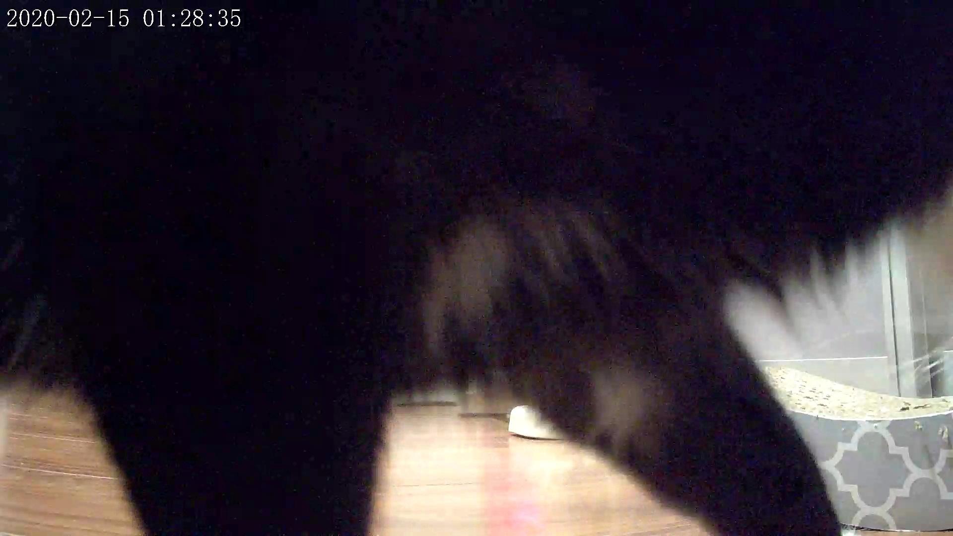 風鈴監視カメラ画像と直視画像と、マヨに期待_e0144012_20331302.jpeg