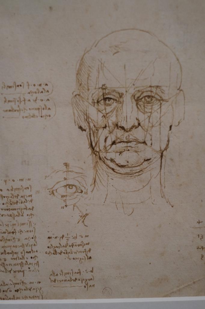ルーヴル美術館 レオナルドダヴィンチ展 Vol2 観察と分析_f0050534_07351117.jpg