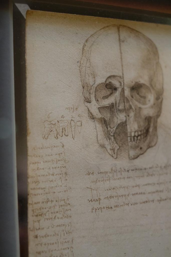 ルーヴル美術館 レオナルドダヴィンチ展 Vol2 観察と分析_f0050534_07352256.jpg