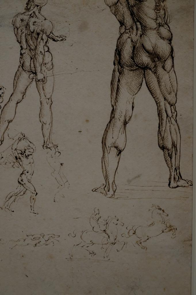 ルーヴル美術館 レオナルドダヴィンチ展 Vol2 観察と分析_f0050534_07352303.jpg