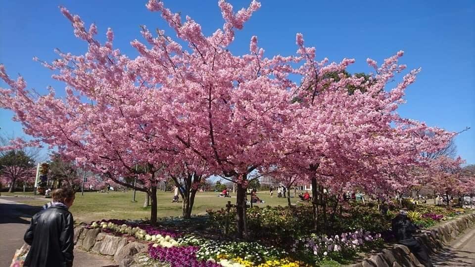 農業文化園・戸田川緑地へ行ってきました♪_f0373339_12524294.jpg