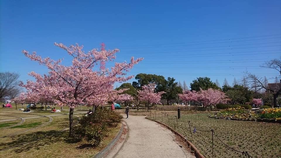 農業文化園・戸田川緑地へ行ってきました♪_f0373339_12530384.jpg