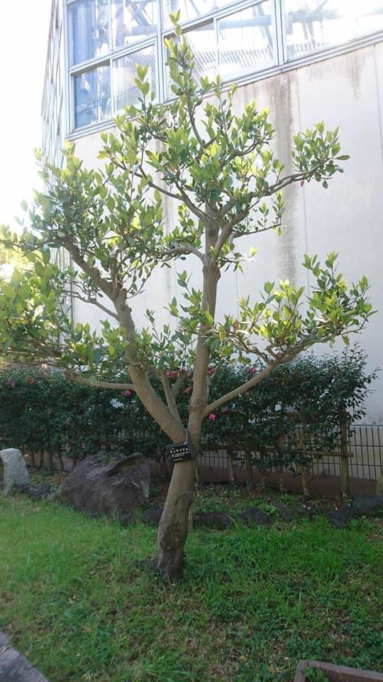 農業文化園・戸田川緑地へ行ってきました♪_f0373339_13151344.jpg